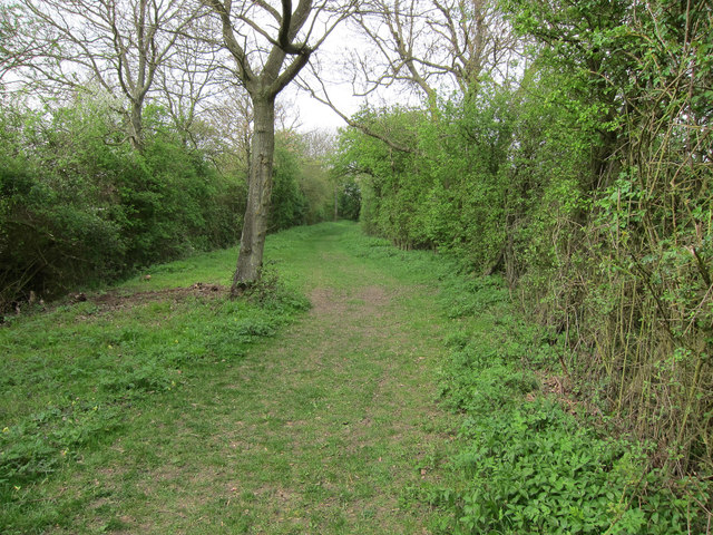 Footpath from Burton End