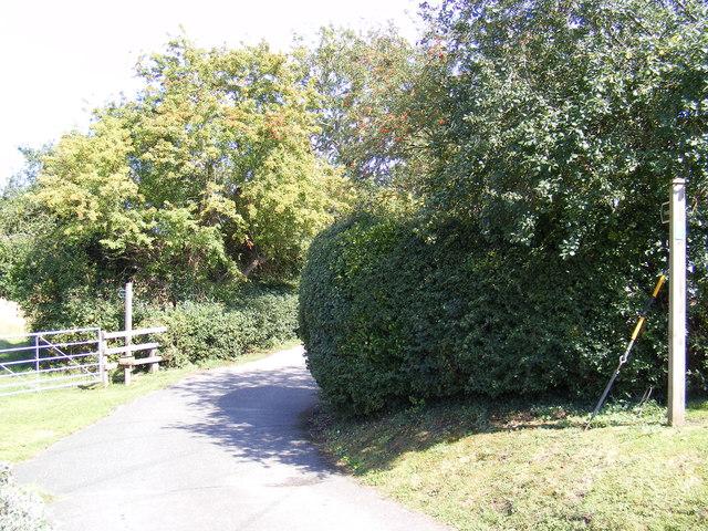 Footpaths to the B1079 Woodbridge Road & Mill Hill