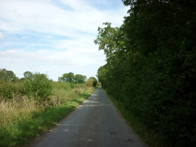 Hords Lane at Nafferton Carrs