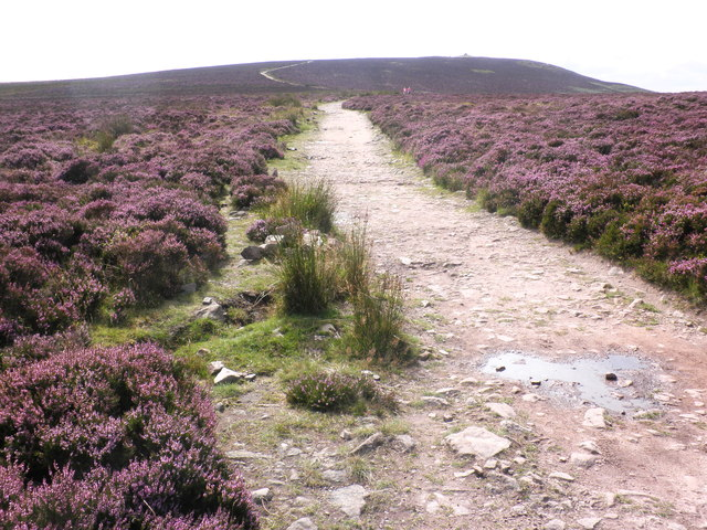 Ridge path, Dunkery Hill