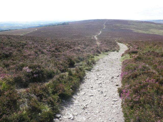 Path towards Great Rowbarrow