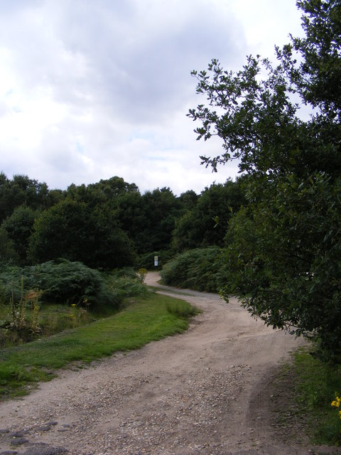 Footpath to Sandlings Walk over Balxhall Heath
