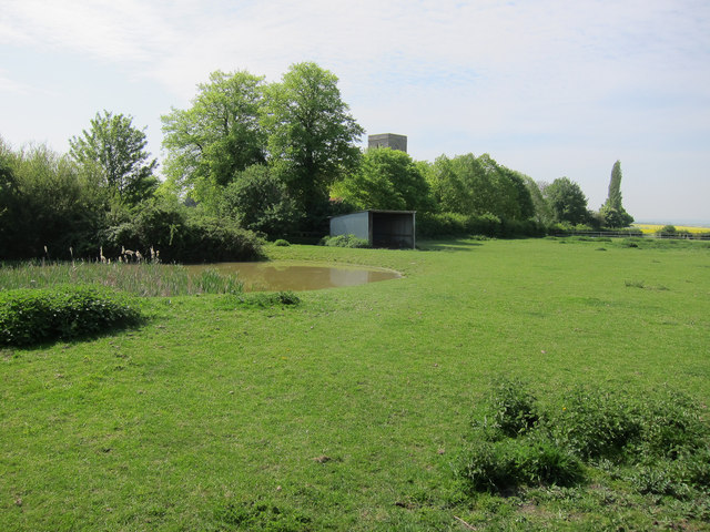 Small pond, West Wickham