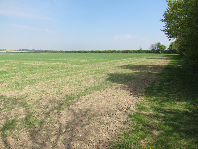 Footpath around West Wickham