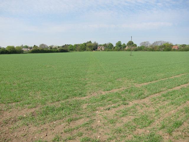 Footpath to West Wickham