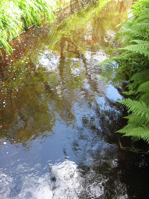 Reflections in Geilston Burn