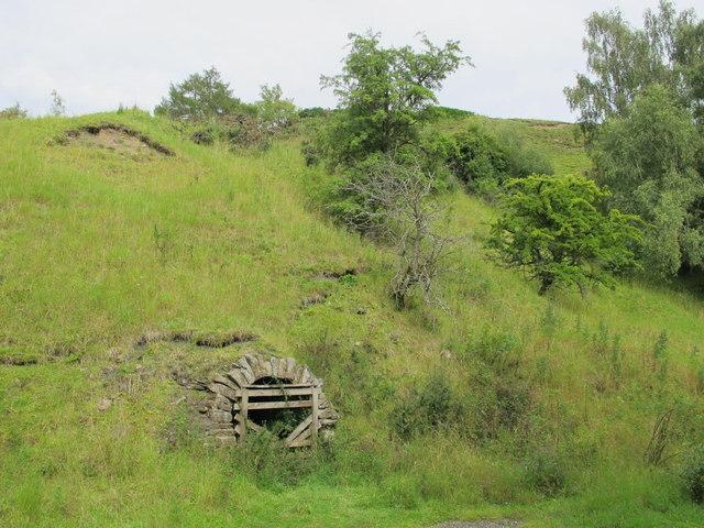 Old level, Red Vein Mine