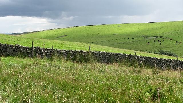 Dyke, Heugh Hill