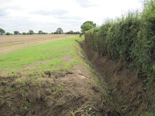 Field  Drain  in  open  Country