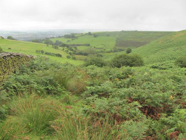 View from the bridleway on Mynydd Maendy