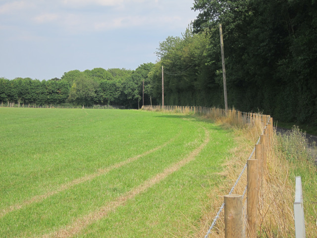 Field by Bunce Court Road