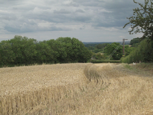 Part-harvested field behind Stone Cottage