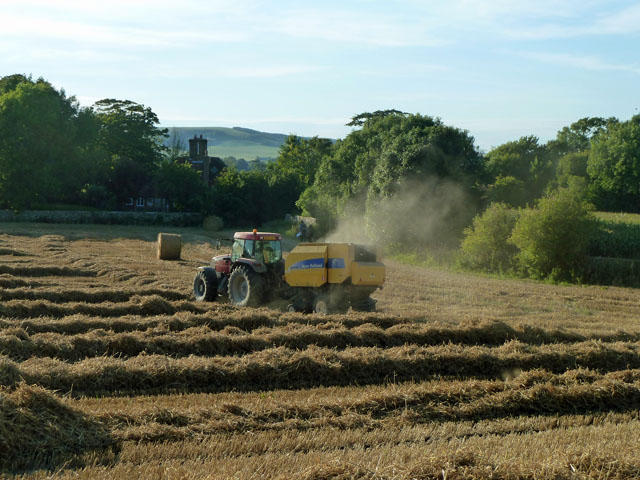 Baling the straw