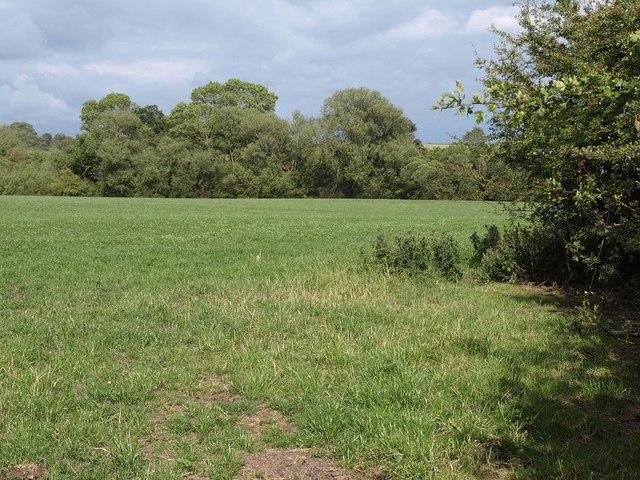 Field near Oak Bank Farm