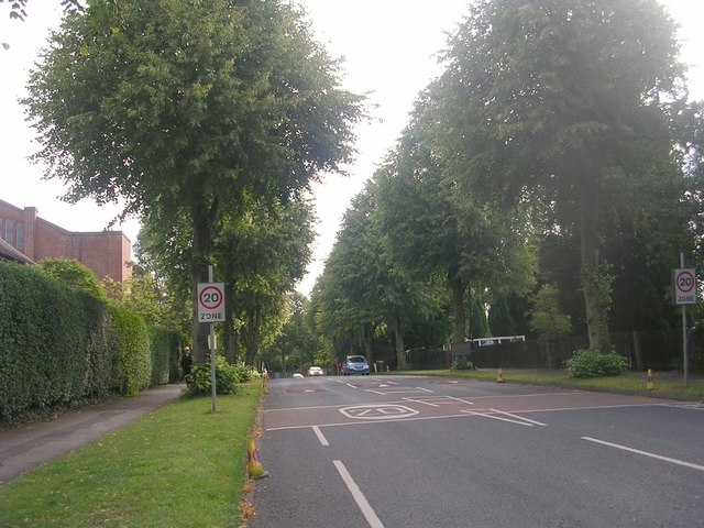 Campleshon Road - viewed from Albemarle Road