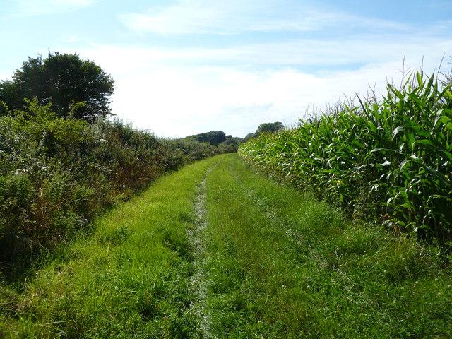 Berwick, footpath