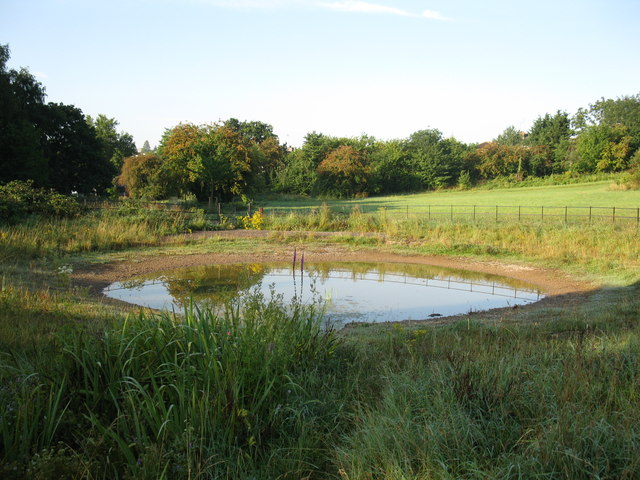 Pond at Callington Road nature reserve