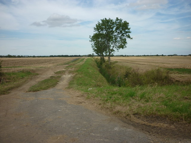 Farmland to the north of Stockbridge  Lane