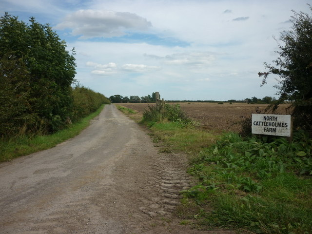 The road to North Cattleholmes Farm