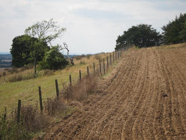 Fields by Stonestile Farm Road