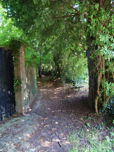 Cora's Path near the garage in Poynings