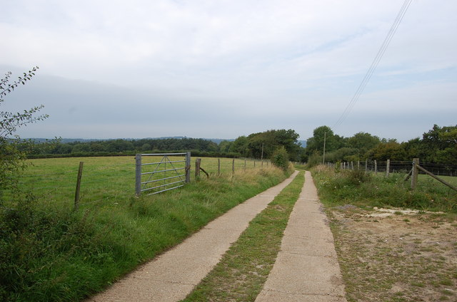 Drive to Little Worge Farm