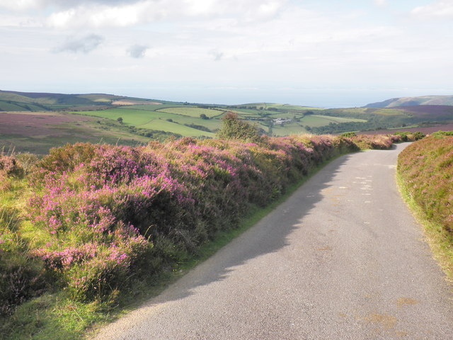 Minor road to Luccombe