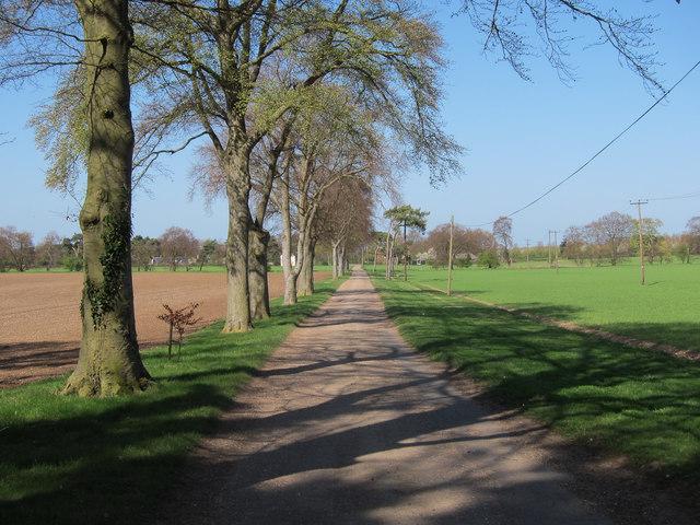 Westley Lodge Farm access track