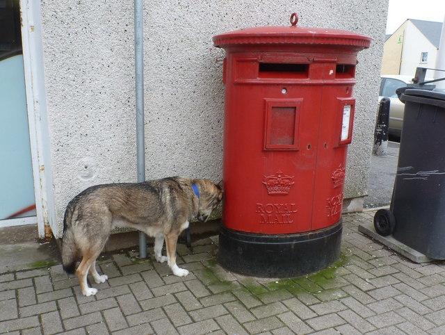 Thurso: postbox № KW14 69