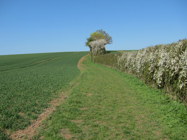 Bridleway to Willingham Green