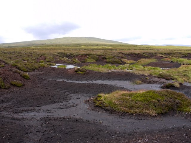Peat hags on Great Cocklake