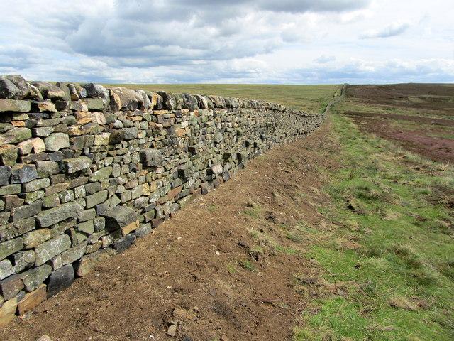 Boundary Wall near Rom Shaw Head