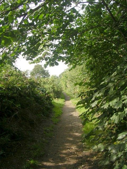 Footpath - Scarcroft Road