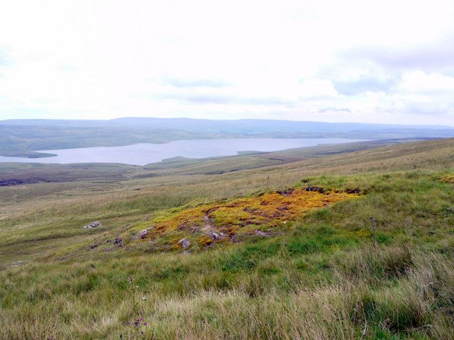 Sphagnum moss near Black Well