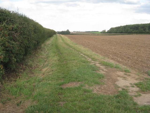 Farm track to Glebe Farm