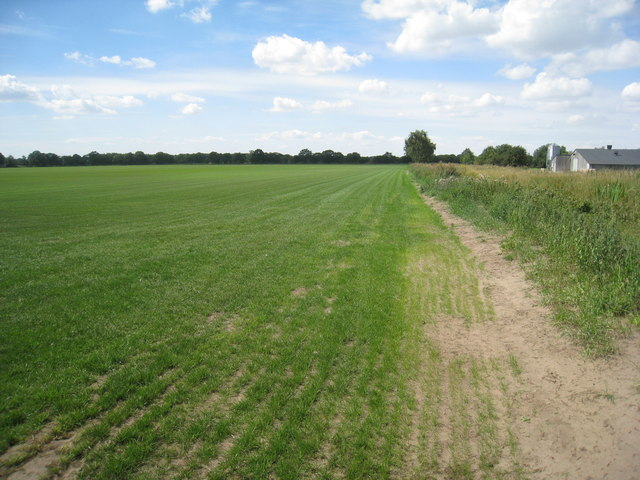 The footpath to Thorney