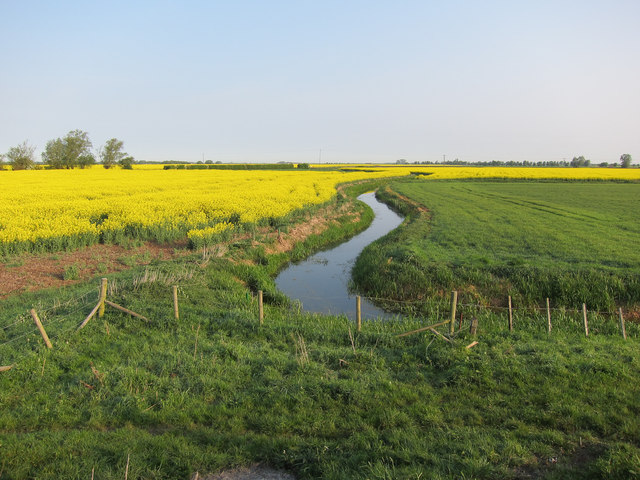 Fenland by Old West River