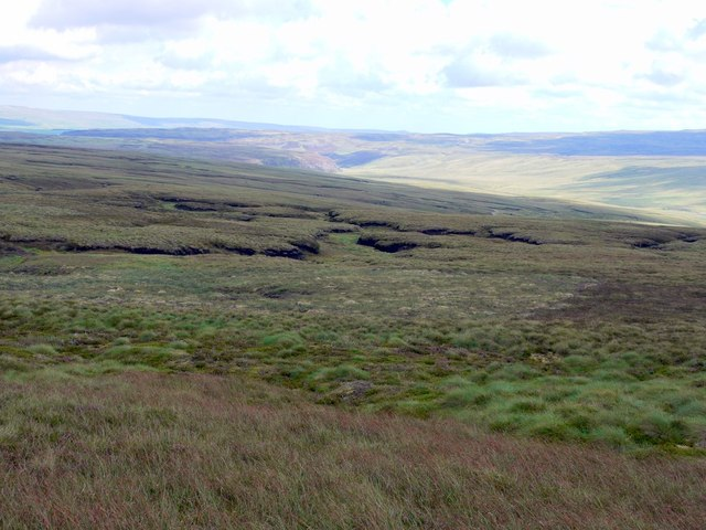 Moorland south-east of Meldon Hill