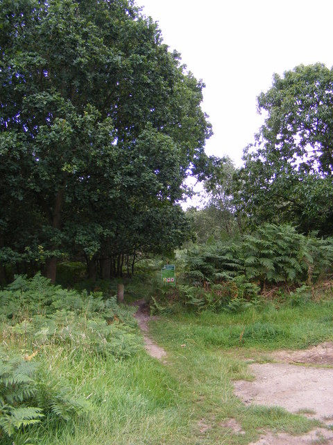 The start of the footpath to Sandlings Walk over Blaxhall Heath
