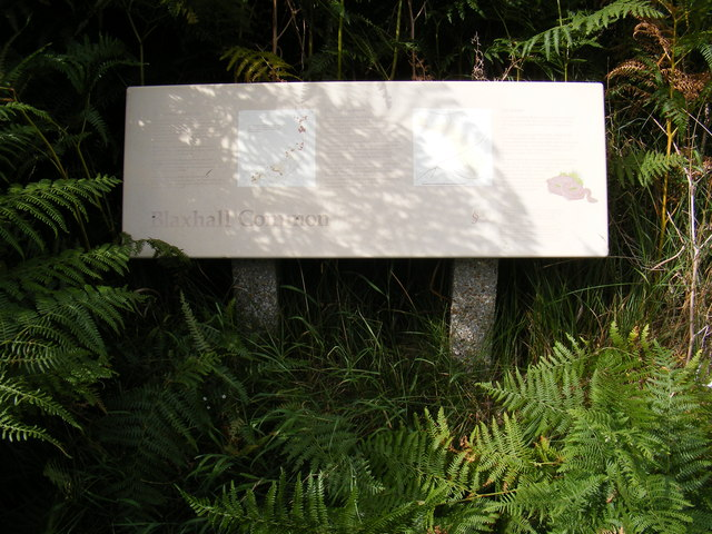Blaxhall Common Information Board