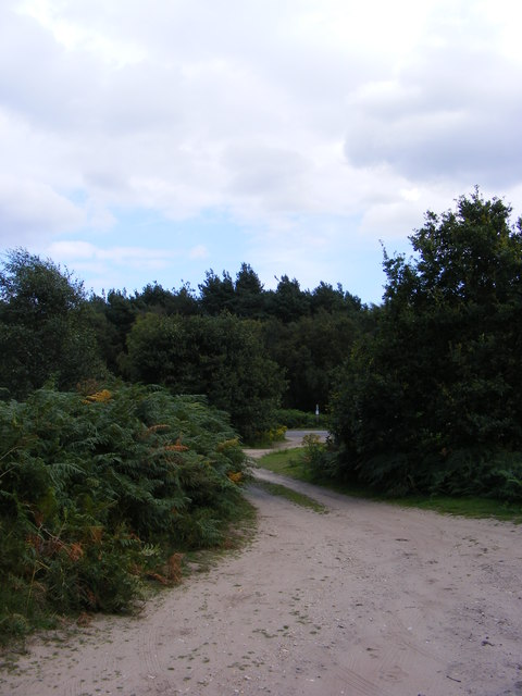 Restricted Byway over Blaxhall Common