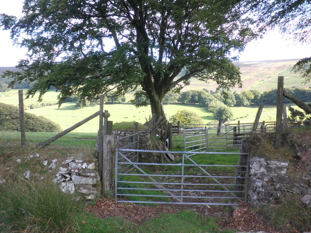 Entrance to sheep enclosure, above Bagley Combe