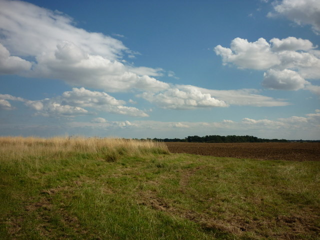 Looking south from Rise Wood
