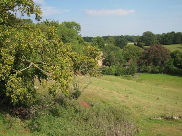 Field off Hillside Road