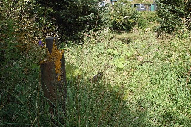 Remnant of the Wire Bridge, Peebles