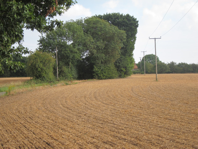Field by Holbeam Road