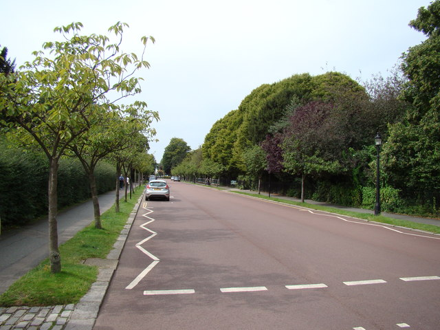 Chester Road #2