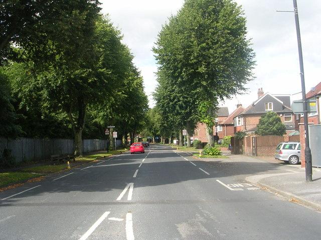 Campleshon Road - Bishopthorpe Road