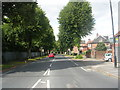 SE6050 : Campleshon Road - Bishopthorpe Road by Betty Longbottom