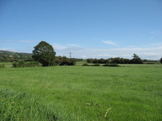 Stoke Moor